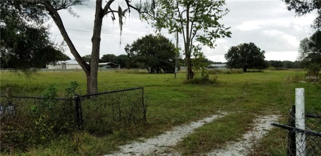 9935 Wauchula Road, Myakka City, FL 34251 (MLS #A4421028) :: Revolution Real Estate