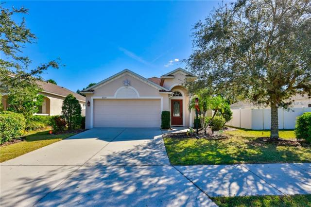6227 Blackdrum Court, Lakewood Ranch, FL 34202 (MLS #A4421104) :: Team Pepka