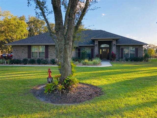 27718 Austin Woods Drive, Dade City, FL 33525 (MLS #A4421211) :: Team Pepka