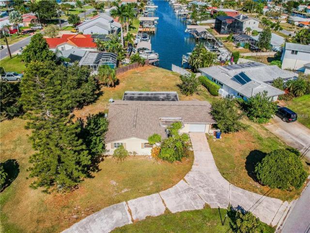 4807 Palmetto Point Drive, Palmetto, FL 34221 (MLS #A4421350) :: Remax Alliance