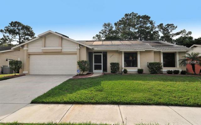 2229 Cork Oak Street W, Sarasota, FL 34232 (MLS #A4421449) :: Medway Realty