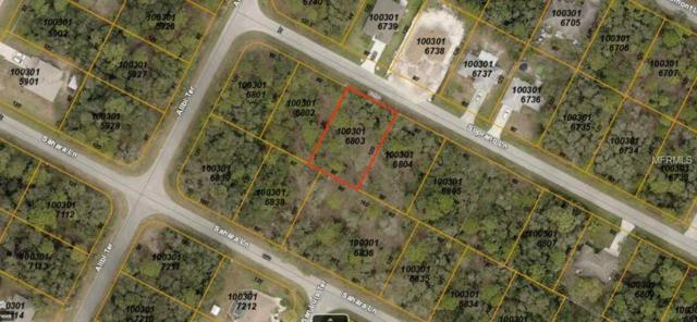 Soprano Lane, North Port, FL 34286 (MLS #A4421735) :: Mark and Joni Coulter | Better Homes and Gardens