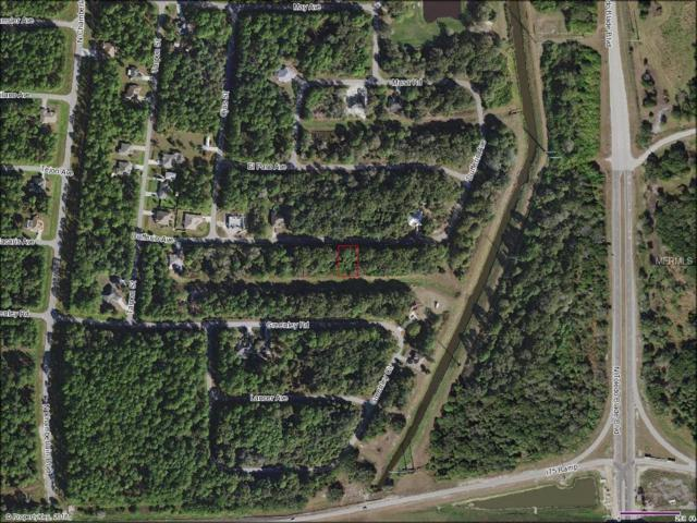 Dufferin Avenue, North Port, FL 34286 (MLS #A4421840) :: Homepride Realty Services