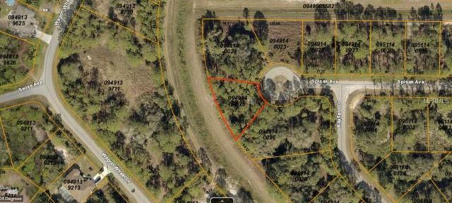 Spisak Avenue, North Port, FL 34291 (MLS #A4421856) :: Homepride Realty Services