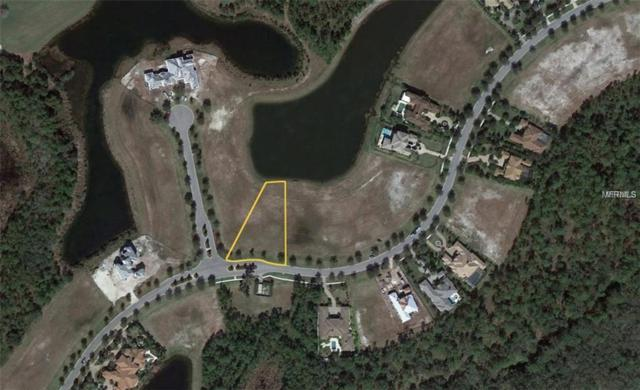 19405 Ganton Avenue, Bradenton, FL 34202 (MLS #A4422416) :: Griffin Group