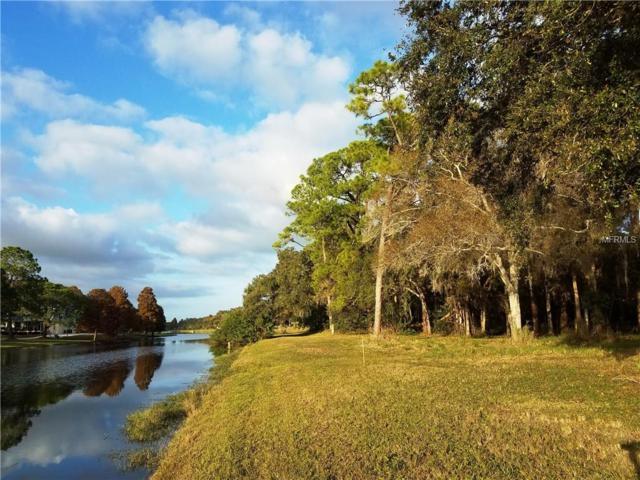 9299 98TH Avenue, Seminole, FL 33777 (MLS #A4422461) :: Burwell Real Estate