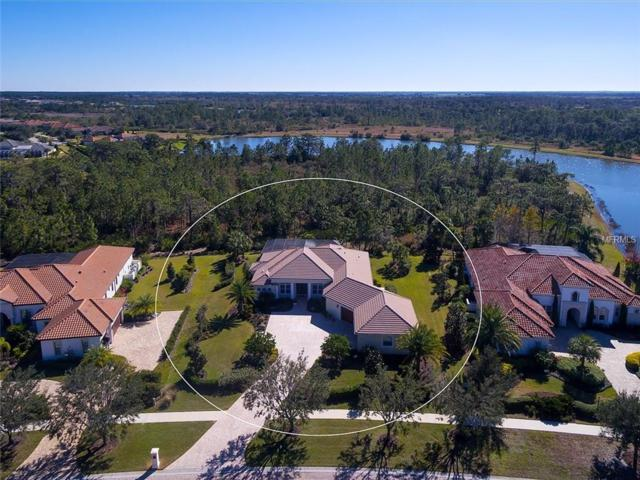19452 Beacon Park Place, Bradenton, FL 34202 (MLS #A4422948) :: Griffin Group