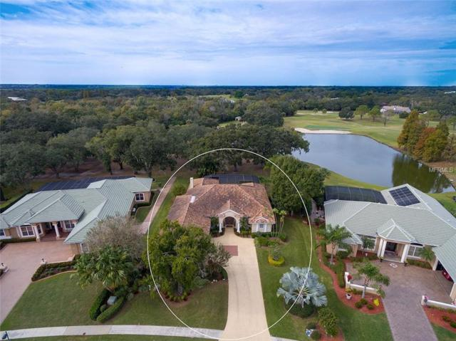 2905 Little Country Road, Parrish, FL 34219 (MLS #A4423047) :: RE/MAX CHAMPIONS