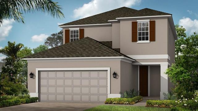 8524 Arabella Lane, Seminole, FL 33777 (MLS #A4423266) :: Burwell Real Estate