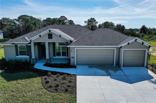 6230 Foal Creek Drive, Parrish, FL 34219 (MLS #A4423438) :: Homepride Realty Services