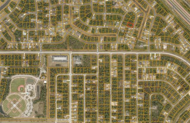 Cromey Road, North Port, FL 34288 (MLS #A4423632) :: Homepride Realty Services