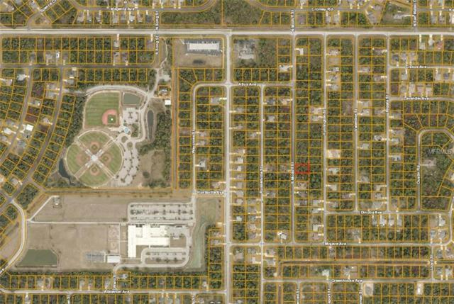 S Mcduff Street, North Port, FL 34288 (MLS #A4423699) :: Griffin Group