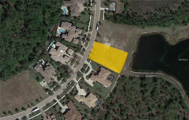 19458 S Beacon Park Place, Bradenton, FL 34202 (MLS #A4423844) :: Griffin Group