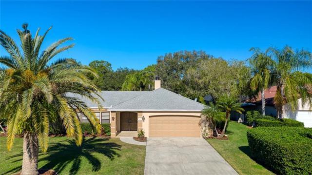 4847 Greywood Lane, Sarasota, FL 34235 (MLS #A4423874) :: McConnell and Associates