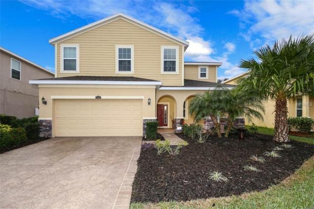 5707 New Paris Way, Ellenton, FL 34222 (MLS #A4423980) :: Medway Realty