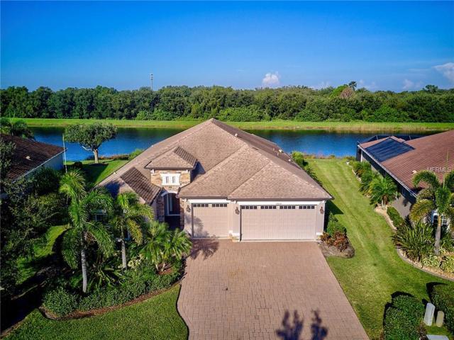 12035 Aster Avenue, Bradenton, FL 34212 (MLS #A4424150) :: Medway Realty