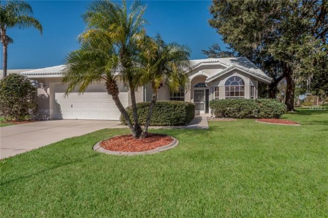 6441 Stone River Road, Bradenton, FL 34203 (MLS #A4424219) :: Zarghami Group