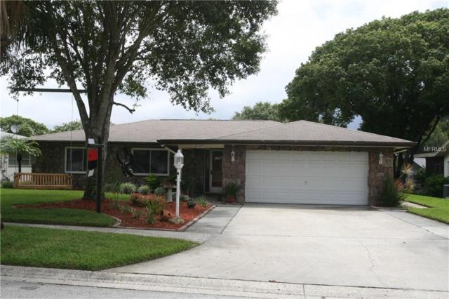 3270 Causeway Drive, Palm Harbor, FL 34684 (MLS #A4424223) :: Jeff Borham & Associates at Keller Williams Realty