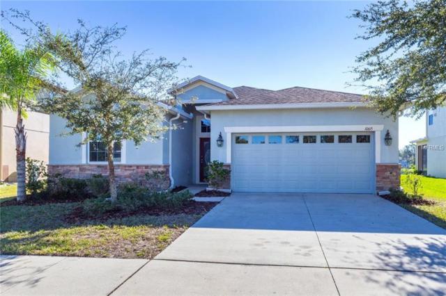 10615 Blue Coral Lane, Tampa, FL 33647 (MLS #A4424455) :: Delgado Home Team at Keller Williams