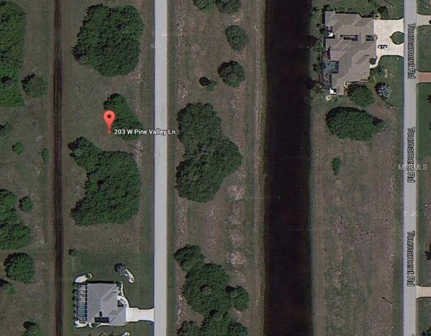 203 W Pine Valley Lane, Rotonda West, FL 33947 (MLS #A4424469) :: RE/MAX Realtec Group