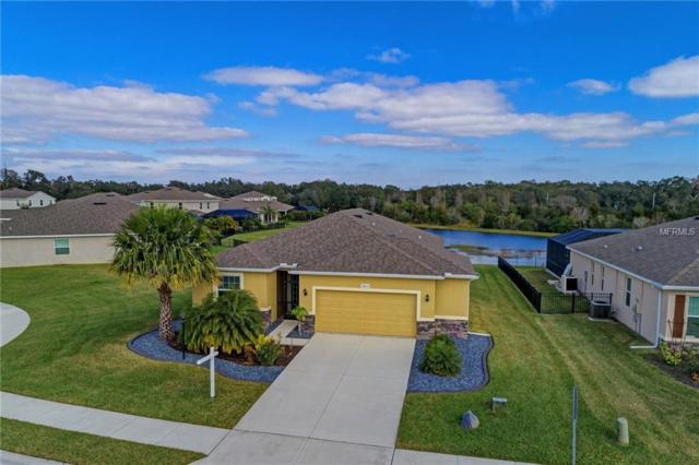 2814 130TH Avenue E, Parrish, FL 34219 (MLS #A4424514) :: Medway Realty