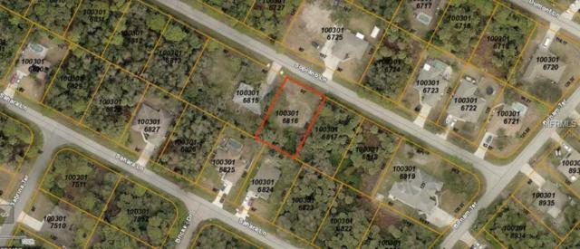 Soprano Lane, North Port, FL 34286 (MLS #A4424533) :: Homepride Realty Services