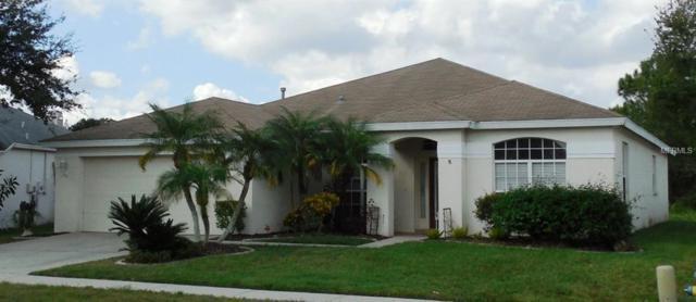 29627 Allegro Drive, Wesley Chapel, FL 33543 (MLS #A4424608) :: Cartwright Realty