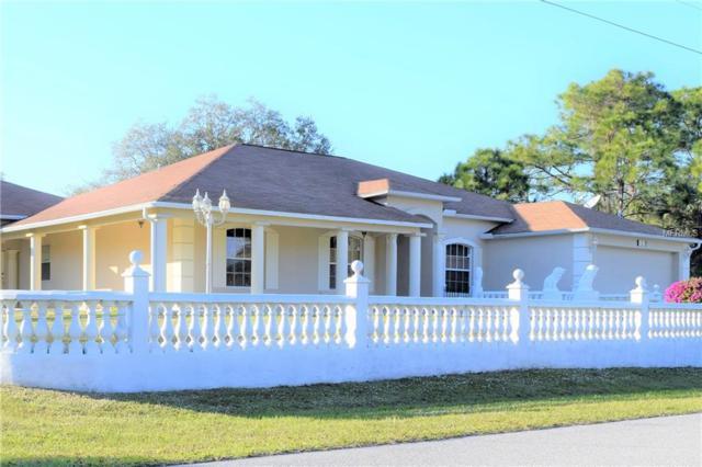 151 Tillman Street, Port Charlotte, FL 33954 (MLS #A4424638) :: RE/MAX Realtec Group