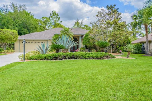 595 Pine Ranch East Road, Osprey, FL 34229 (MLS #A4424765) :: Medway Realty