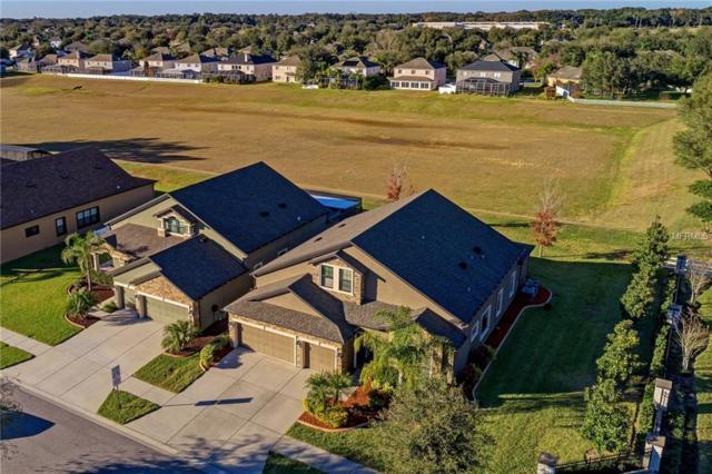 3516 Starling Estates Court, Valrico, FL 33596 (MLS #A4424933) :: Team Bohannon Keller Williams, Tampa Properties
