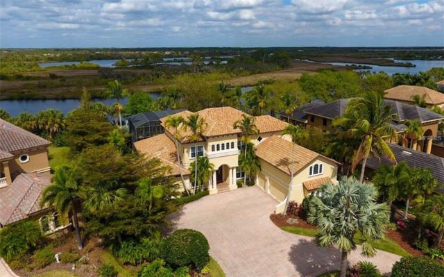 10309 Riverbank Terrace, Bradenton, FL 34212 (MLS #A4425068) :: Team Bohannon Keller Williams, Tampa Properties