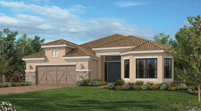 5393 Salcano Street, Sarasota, FL 34238 (MLS #A4425149) :: Team Bohannon Keller Williams, Tampa Properties