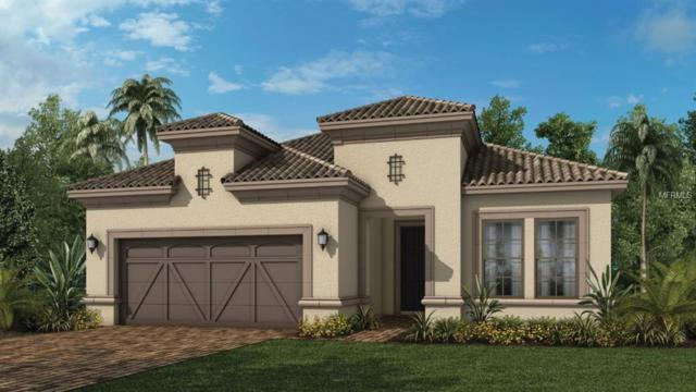 5440 Manchini Street, Sarasota, FL 34238 (MLS #A4425160) :: Team Bohannon Keller Williams, Tampa Properties