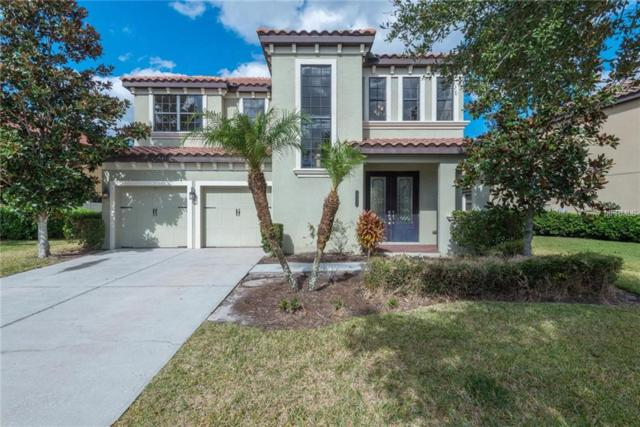 20312 Chestnut Grove Drive, Tampa, FL 33647 (MLS #A4425659) :: Andrew Cherry & Company