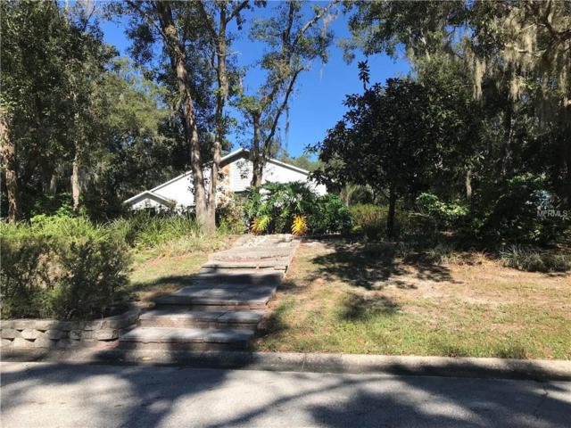 11324 Tralee Drive, Riverview, FL 33569 (MLS #A4425764) :: The Duncan Duo Team