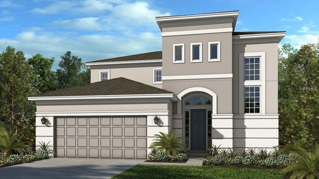 7091 Scarlet Cedar Drive, Wesley Chapel, FL 33545 (MLS #A4425881) :: The Brenda Wade Team
