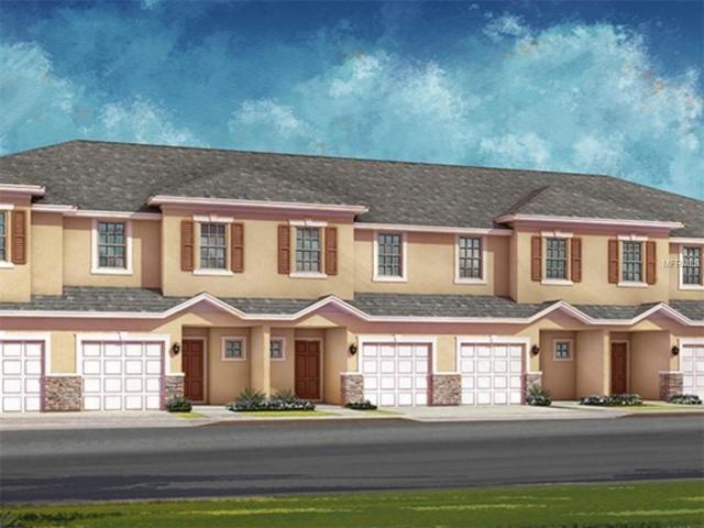 1510 Merlot Court, Oldsmar, FL 34677 (MLS #A4426646) :: Cartwright Realty