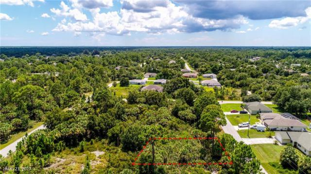 Duluth Terrace, North Port, FL 34286 (MLS #A4427061) :: Griffin Group
