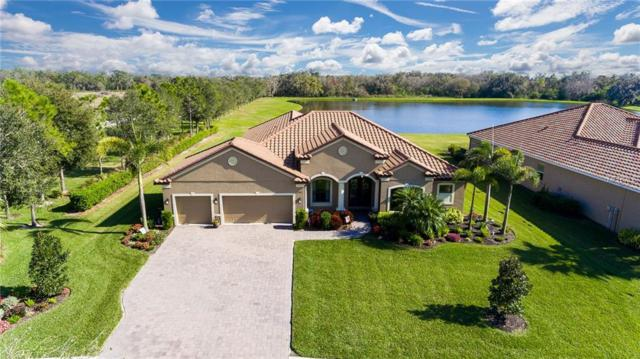 13307 56TH Court E, Parrish, FL 34219 (MLS #A4427301) :: Team Pepka
