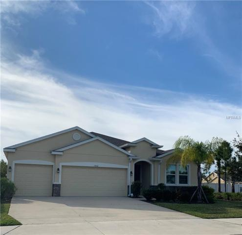 15410 High Bell Place, Bradenton, FL 34212 (MLS #A4427354) :: Griffin Group