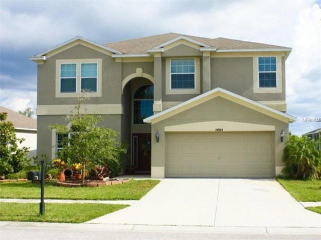18904 Narimore Drive, Land O Lakes, FL 34638 (MLS #A4427521) :: Griffin Group