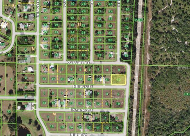 29246 Hillock Street, Punta Gorda, FL 33982 (MLS #A4427531) :: Cartwright Realty