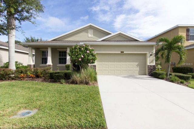 8728 Karpeal Drive, Sarasota, FL 34238 (MLS #A4427696) :: Sarasota Gulf Coast Realtors