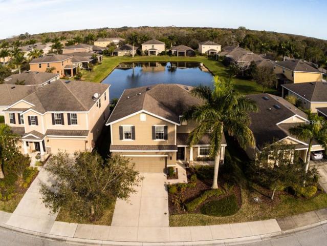 8543 Karpeal Drive, Sarasota, FL 34238 (MLS #A4427743) :: Keller Williams On The Water Sarasota