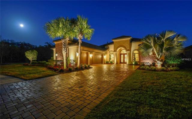 13824 Palazzo Terrace, Lakewood Ranch, FL 34211 (MLS #A4427799) :: McConnell and Associates