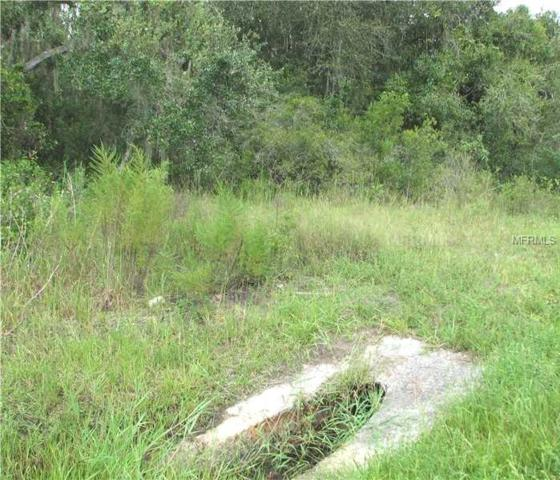 35215 State Rd 70, Myakka City, FL 34251 (MLS #A4427868) :: Griffin Group