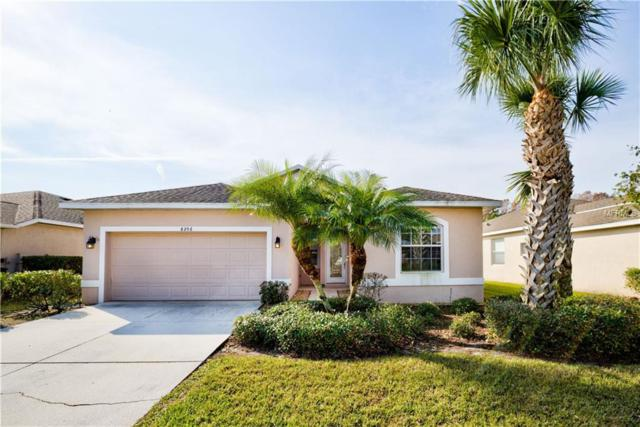 8206 Haven Harbour Way, Bradenton, FL 34212 (MLS #A4427907) :: Medway Realty