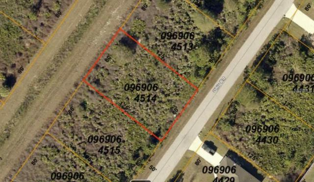 Ohio Road, North Port, FL 34291 (MLS #A4428064) :: McConnell and Associates
