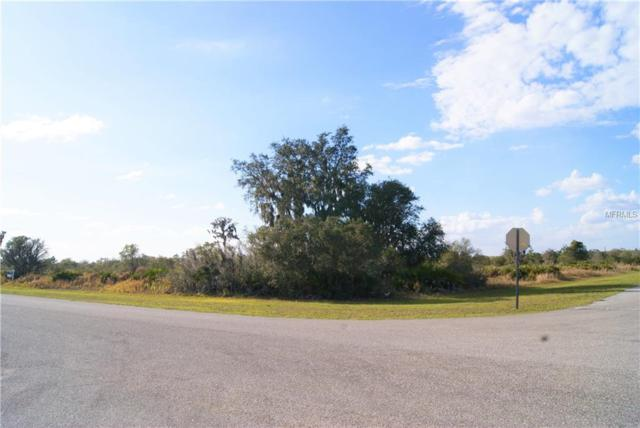 0000 11 Avenue E, Myakka City, FL 34251 (MLS #A4428094) :: Mark and Joni Coulter | Better Homes and Gardens