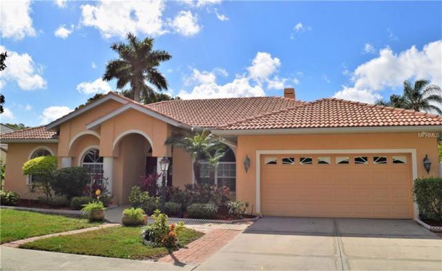 4470 Mcintosh Lake Avenue, Sarasota, FL 34233 (MLS #A4428157) :: Medway Realty